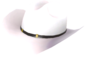 Painted Texas Ten Gallon E6E6E6.png