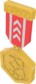 Painted Tournament Medal - TF2Connexion B8383B.png