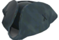 Painted Tippler's Tricorne 384248.png
