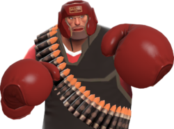 Pugilist's Protector.png