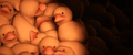 End of The Line - SFM Ducks.png