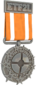 Painted Tournament Medal - ETF2L 6v6 C36C2D Participant.png