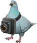 Painted Bird's Eye Viewer 839FA3.png