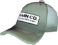 Painted Mann Co. Cap 839FA3.png