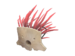 Item icon Mask of the Shaman.png