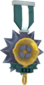 Painted Tournament Medal - Ready Steady Pan 2F4F4F Ready Steady Pan Helper Season 3.png