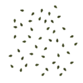 Frontline birch groundleaves 2 scatter.png
