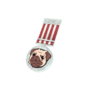 Backpack Pugiklander 2nd Place.png
