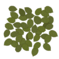 Frontline groundleaves 1.png