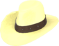Painted Hat With No Name F0E68C.png