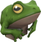 Painted Tropical Toad 729E42.png