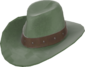 Painted Hat With No Name 424F3B.png