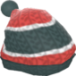 Painted Woolen Warmer 2F4F4F.png