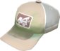 Painted Ellis' Cap A89A8C.png