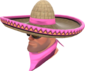 Painted Wide-Brimmed Bandito FF69B4.png