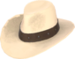 Painted Hat With No Name C5AF91.png