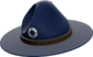 Painted Sergeant's Drill Hat 18233D.png