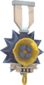 Painted Tournament Medal - Ready Steady Pan A89A8C Ready Steady Pan Helper Season 3.png