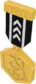 Painted Tournament Medal - TF2Connexion 141414.png