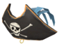 Painted Buccaneer's Bicorne 5885A2.png