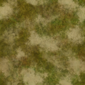 Frontline beachgrass002.png