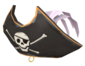 Painted Buccaneer's Bicorne D8BED8.png