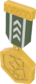 Painted Tournament Medal - TF2Connexion 424F3B.png