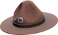 Painted Sergeant's Drill Hat 654740.png