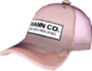 Painted Mann Co. Cap D8BED8.png
