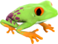 Painted Croaking Hazard FF69B4.png