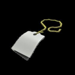 [Image: 250px-Backpack_Description_Tag.png]