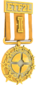 Painted Tournament Medal - ETF2L 6v6 B88035.png