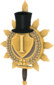 Painted Tournament Medal - Chapelaria Highlander C5AF91.png