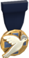 Painted Tournament Medal - Heals for Reals 18233D Donor Medal.png