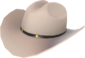 Painted Texas Ten Gallon A89A8C.png