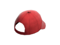Item icon Backwards Ballcap.png