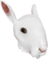 Painted Horrific Head of Hare E6E6E6.png