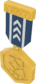 Painted Tournament Medal - TF2Connexion 28394D.png