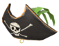 Painted Buccaneer's Bicorne 729E42.png
