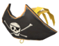 Painted Buccaneer's Bicorne E7B53B.png