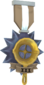 Painted Tournament Medal - Ready Steady Pan 7C6C57 Ready Steady Pan Helper Season 3.png