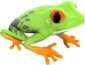 Painted Croaking Hazard BCDDB3.png