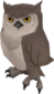 Painted Sir Hootsalot E7B53B.png