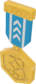 Painted Tournament Medal - TF2Connexion 256D8D.png