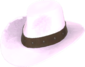 Painted Hat With No Name D8BED8.png