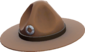 Painted Sergeant's Drill Hat 694D3A.png