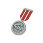 Backpack Tournament Medal - Gamers Assembly - Second Place.png