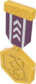 Painted Tournament Medal - TF2Connexion 51384A.png