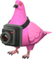 Painted Bird's Eye Viewer FF69B4.png