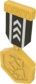 Painted Tournament Medal - TF2Connexion 2D2D24.png